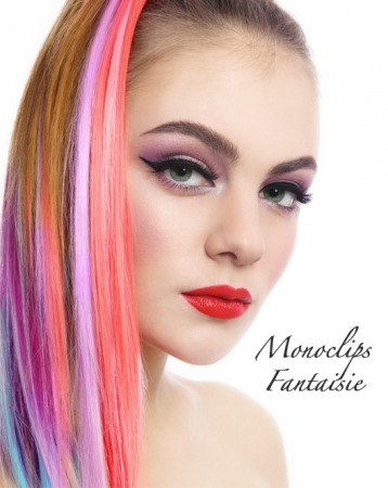 """Extensions de cheveux """"Monoclip Fantaisie"""""""